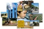 Центр «Окружающая среда — Риск — Здоровье»